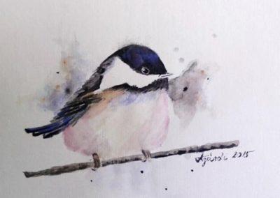 Agárdi Gabi - Ducinke ( Akvarell A4 )