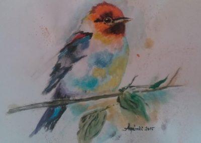 Agárdi Gabi - Kíváncsian ( Akvarell A4 )